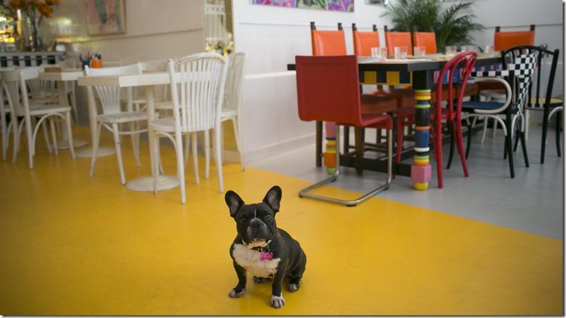 Restaurante_Pet_Madrid