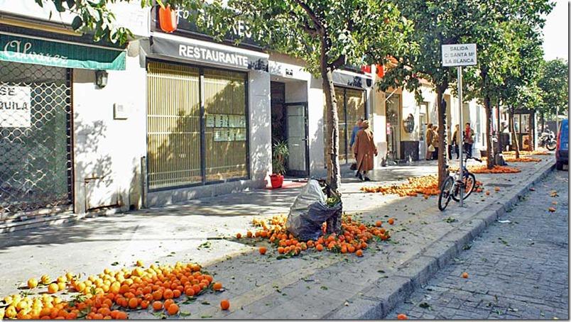 Comunidad Autonoma Andalucía - InmigrantesEnMadrid.com (4) - Foto de Galeon.com