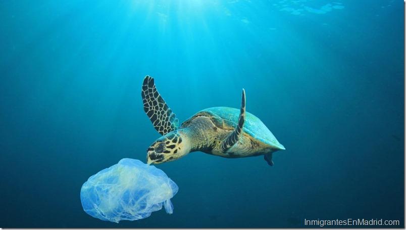 Los plásticos afectados por estas restricciones constituyen el 70% de la basura marina